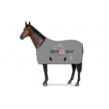 SweatStar Abschwitzdecke RickStar Springer